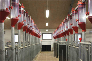 Feed dispensers for dry feeding